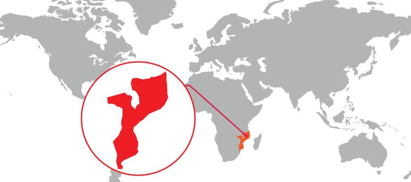 AI: Contractors Committing War Crimes in Mozambique